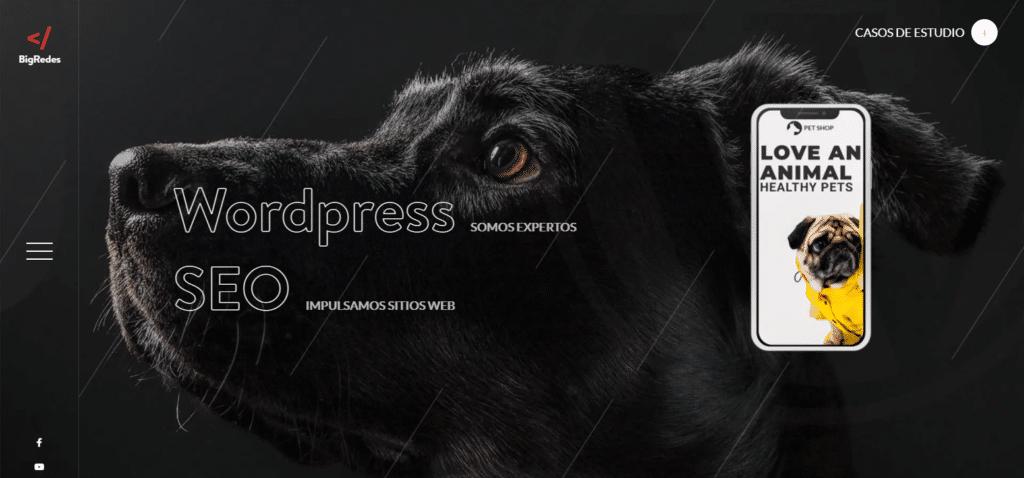 Precio de Diseño de Páginas web en Argentina - BigRedes